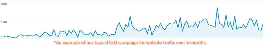 Web traffic chart for Perth business site